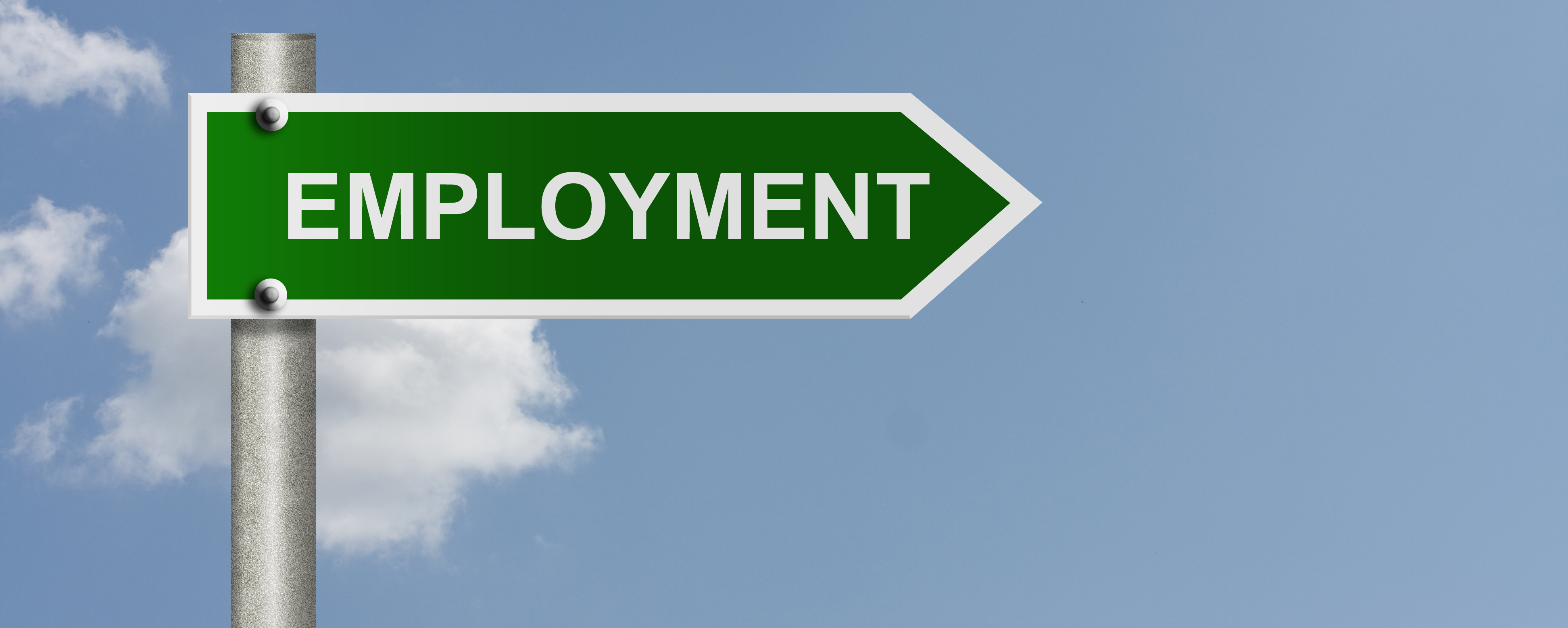 employment rise levins solicitors